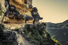 la trona (Josep M.Toset) Tags: arbres bosc barranc boscos catalunya camí d800 josepmtoset muntanya escalada paisatges nikon plantes roca roques sol sortidadesol contrallum siurana cingles nikon24120mm3556gedvr