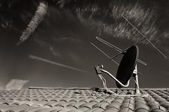 deep noise (blattboldt) Tags: zeiss sony ilce7rm3 alpha7riii manualfocus manualiris manualexposure specialthankstochristophecasenavefromzeissforhispersonalinvolvementinthedevelopmentoftheloxialenseline ⚶ emount loxia235 loxia235biogon widenormal 35mm ludwigbertele 51736001 biogon cutthroughspaceandtime topographic choreographic historiographic rhapsodic didymiumfilter hoyara54redenhancerintensifier noise sky clouds antenna parabolicantenna roof tiles sepia monochrome serenade rhythm summer morning sunrise europe germany surrealism surrealistic architecture melancholy mélancolie melancholie afterimage