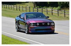 Flip Flop Stang.  Virtual Car Cruise 10. Butler, PA (bobchesarek) Tags: mustang flipfloppearl custompaint ford butlermegacruise2018