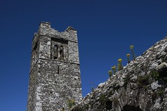 Abbey (Paul McNamara) Tags: slane abbey countymeath ireland flowers tower