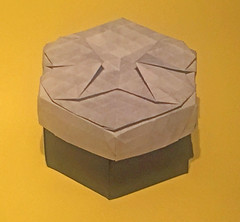 48-Phantom Parade (mganans) Tags: origami tesselations box caja