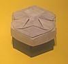 48-Phantom Parade (mganans) Tags: origami tesselations box caja