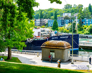 Pacific Producer Looming Large in the Locks