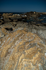 Point Lobos - Rock Coloring smaller (deanwampler) Tags: pointlobos