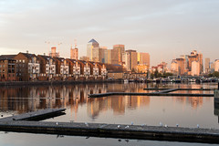 In the setting sun (Mister Rad) Tags: nikond600 nikon50mmf14g london surreyquays greenlanddock canarywharf skyline