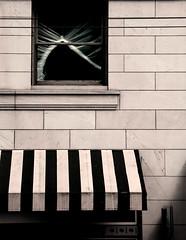 window + awning (dotintime) Tags: window plastic building wall awning urban city shapes dotintime meganlane twist gather stretch skew