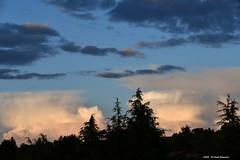 Nubi di Giugno 5 (Paolo Bonassin) Tags: clouds nubi wolke sky