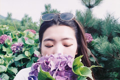 (Hsien hui Tsai) Tags: taiwan taipei yangming photography filmphotography film nikon nikonem em agfa agfa200 girl hydrangea flower 2018