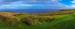 At the top of Rano Kau / На вершине Рано Кау (Vladimir Zhdanov) Tags: travel chile polynesia rapanui easterisland landscape nature sky cloud ranokau orongo volcano field grass ancient ruins tree