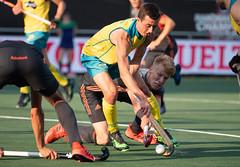 P1203240 (roel.ubels) Tags: hockey fieldhockey champions trophy breda nederland oranje holland australia australië india belgium belgië 2018