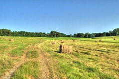 Field (Madchemist2013) Tags: farm mississippi nesbit sky blueskies trees hay fields country south midsouth summer hot humid nikond3200 hdr hornlake