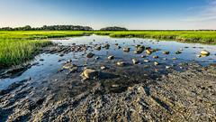 Hammonasset Marsh (Alan Charles) Tags: ct connecticutshore hammonassetbeachstatepark hammonassetstateparkmeigspoint meigspoint seascape beach marsh ocean rockyshoreshore sea shore