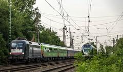 06_2018_07_20_Wanne_Eickel_Brücke_Wakefieldstrasse_ES_64_U2_-_001_6182_501_DISPO_FLIXTRAIN_FLX_1807_0826_102_ABRN ➡️ Gelsenkirchen (ruhrpott.sprinter) Tags: ruhrpott sprinter deutschland germany allmangne nrw ruhrgebiet gelsenkirchen lokomotive locomotives eisenbahn railroad rail zug train reisezug passenger güter cargo freight fret herne wanneeickel db dispo mrcedispolok flx flixtrain rpool 1428 5401 6155 6182 es 64 f4 u2 es64f4 es64u2 1807 logo outdoor natur graffiti