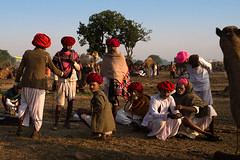 Pastoral. Mela camels. Jalrapatan, Rajasthan. India. (Tito Dalmau) Tags: men rabari pastoral turbans red camels mela jalrapatan rajasthan india