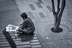 Reading the News (hotpotato70) Tags: brisbane cbd queensland australia centralbusinessdistrict bench paper reading news sitting concentrating tree city monochrome blackandwhite silverefexpro2 canon7d tamron2470mmf28 pavement tabloid king george square