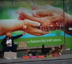 Porto Bolhao (milchschäfer3) Tags: porto portugal bolhao street geben und nehmen hund hunde