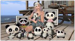 .And they called in Panda Love (Abi Latzo) Tags: beedesigns panda toys gacha shinyshabby events secondlife sl shopping mesh homeandgarden home decor