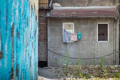 Blue Backyard (TablinumCarlson) Tags: sofia bulgaria europa europe bulgarien door facade fassade sumicron leica m m240 90mm hinterhof hof blue blau backyard window fenster wäsche clothesline wäscheleine dof küche kitchen kitchenwindow küchenfenster