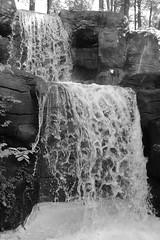 Day at John Ball Zoo (PhotoJester40) Tags: outside outdoors waterfall johnballparkzoo water noirblanc blackandwhite bnw bw