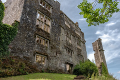 Elizabethan mansion at Berry Pomeroy Castle (Keith in Exeter) Tags: berrypomeroy castle mansion ruins building architecture window tower stonework english heritage brass tree sky