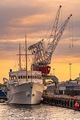 Solnedgang Oslo Port (Of Light & Lenses) Tags: norge norway oslo oslofjord sunset sonnenuntergang hafen havn beautyfulsunset cranes warmcolors mzuiko1875mm norwegen hafenanlagen abendlicht abendhimmel