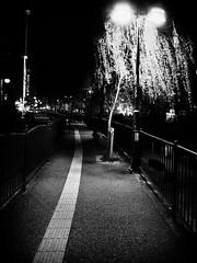 Street Fragments #380 - FUKUOKA Day and Night (Yoshi T. (kagirohi)) Tags: japan japanese blackwhite bw street streetphotograph streetphotography alley fragment urban city cityscape snapshot ricoh gr ricohgr 日本 福岡 白黒 モノクローム モノクロ 路上 ストリート ストリートフォト 都市 風景 都市風景 スナップ スナップ写真 リコー 断片 blackandwhite monochrome depthoffield fukuoka