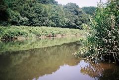 The Avon, at Eastwood Farm (knautia) Tags: riveravon eastwoodfarm bristol england uk june 2018 film ishootfilm olympus xa2 olympusxa2 kodak ektar 100iso nxa2roll29 lagoon naturereserve river avon