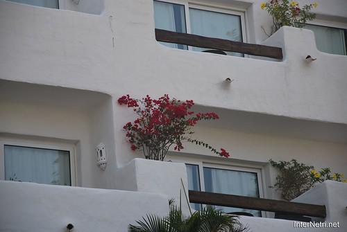 Готель Хардін Тропікаль, Тенеріфе, Канари  InterNetri  427