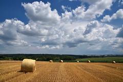 Le temps des moissons (Excalibur67) Tags: nikon d750 sigma globalvision 24105f4dgoshsma paysage landscape nature ciel cloud sky nuages campagne rundball moissons champs