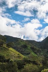 _MG_9988 (noemislee) Tags: peru oxapampa noemislee noemi slee 2018 jungle selva sunny nature naturaleza travel viaje adventure greenery green tourism sky skyporn cielo nubes clouds vibrant vibrance wilderness landscape bluesky turquoise