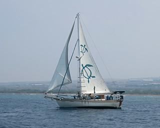 boat to sail
