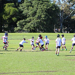 Petersham u8_5