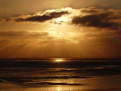 evening glow (achatphoenix) Tags: sun eveningsun glow dollart dollard dollartbay dollartbusen ems riverems