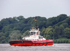 ZP Bear (Parchimer) Tags: schlepper tugboat sleepboot holownik remorqueur bogserbåt remolcadores hamburg elbe hafen damen atd2412