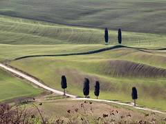 Val d'Orcia (Jolivillage) Tags: jolivillage paysage landscape paesaggio valdorcia pienza toscane tuscany toscana italie italia italy europe europa vert verde green arbres trees alberi cyprés picturesque geotagged fabuleuse