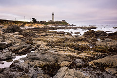 Pigeon Point lighthouse, low tide (vhines200) Tags: california 2018 pigeonpoint lighthouse pacificocean rocks seascape pacificcoast coastline