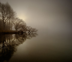 Tutira reflections (lizcaldwell72) Tags: trees hawkesbay sunrise reflection sky newzealand mist water laketutira light