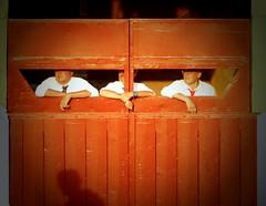la grande porte ;-) (aficion2012) Tags: ceret 2018 feria ceretdetoros corrida bull fight bullfight tauromaquia tauromachie toros toro taureaux taureau toreo octavio chacón fraile lidia callejon shadow