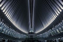The Oculus! (soomness) Tags: theoculus newyork newyorkcity newyorker design geometry geometric architecture archilovers architect fujifilmxt2 fujifilm fujinon fuji xt2 xseries xf16mmf14wr unitedstates usa worldtradecenter wtc lines symmetry symmetrical