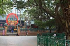 Tin Hau Temple Complex, Yau Ma Tei (tomosang R32m) Tags: hongkong 香港 yaumatei 油麻地 天后廟 tinhautemple 九龍 kowloon canon hkexpress 香港エクスプレス temple