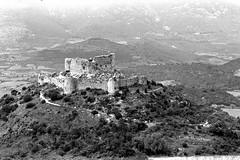 Château d'Aguilar (Philippe_28) Tags: aguilar france europe 11 aude tuchan château castle ruines ruins languedoc roussillon cathare corbières 24x36 argentique analogue camera photography film 135 bw nb