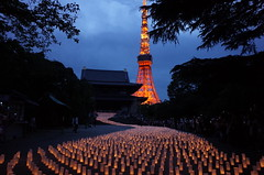 Tokyo Tower, Temple & Candle Lights (seiji2012) Tags: 東京 増上寺 七夕 キャンドル 日本大好きプロジェクト tokyo zoujyouji candle light