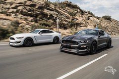 2 Shelby GT350R's (indefinitecars) Tags: ford gt350 shelby mustang nikon technology transport cars car