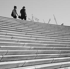 no lines in nature (gicol) Tags: stairs scale gradini step walking andando passeggiare hamburg amburgo alemania germania german