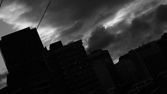 DSC06980 (A Common Courtesy) Tags: a common courtesy wellington auckland new zealand camera photo bw color black white day night monochrome bokeh sony nex 5a nex5a focuspeaking minolta mc pg 50mm 14rokkor fotodiox adapter
