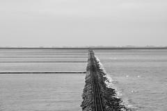 train to nowhere (malp007) Tags: bahn gleis landschaft lüttmoorsiel meer nordfriesland northsea vaddehavet wattenmeeer landscape lines pure tog train blackwhite monochrome horizont