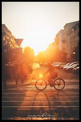 Cyclist (Krueger_Martin) Tags: kastanienallee oderbergerstrase berlin bokeh beyoundbokeh bokehlicious 85mm offenblende festbrennweite primelense canonef85mmf12lii canoneos5dmarkii canoneos5dmark2 photomatix hdr gegenlicht sonne sonnenschein sunshine lensflare colorful bunt farbig fahrrad radfahrer bikerider cyclist city stadt urban