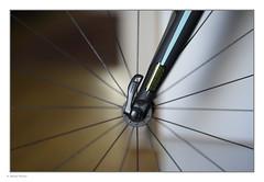 _8107899 mf copy 01 (Michael Fleischer) Tags: bokeh wheel spokes bianchi sigma 105mm f14e art