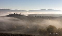 Val d'Orcia (Rolandito.) Tags: italy italia italien italie toscana val dorcia cypress row trees fog morning