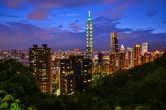 taipei (Lin Jen Chieh) Tags: taiwan taipei 風景 天際線 塔 城市 天空 建築物 101 台北 樹 建築